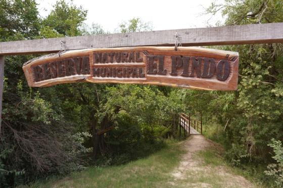 Reserva El Pindo (1)